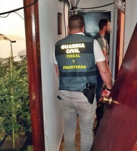 """Espagne: apparition d'un réseau de trafic """"hybride"""" de tabac et de cannabis"""