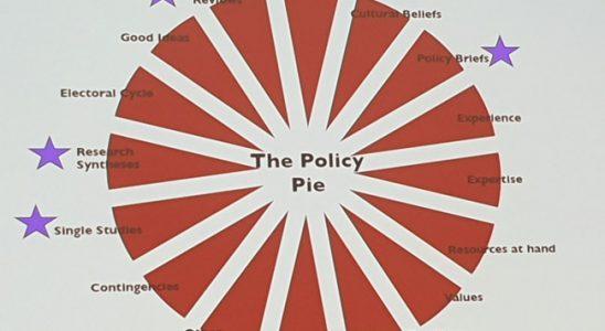 Diagramme à secteurs montrant les différents facteurs qui affectent la politique.