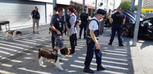 Nîmes: opération dans une zone difficile pour ... 18 caisses de contrebande